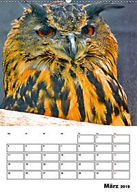 DIE VÖGEL - AUGENBLICKE (Wandkalender 2019 DIN A2 hoch) - Produktdetailbild 3