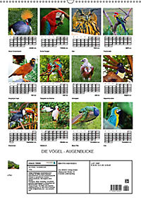 DIE VÖGEL - AUGENBLICKE (Wandkalender 2019 DIN A2 hoch) - Produktdetailbild 13