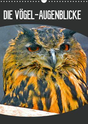 DIE VÖGEL - AUGENBLICKE (Wandkalender 2019 DIN A3 hoch), J. Fryc