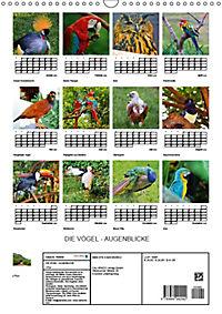 DIE VÖGEL - AUGENBLICKE (Wandkalender 2019 DIN A3 hoch) - Produktdetailbild 13