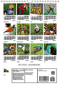 DIE VÖGEL - AUGENBLICKE (Wandkalender 2019 DIN A4 hoch) - Produktdetailbild 13