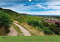 Die Weinstaße im Elsass (Wandkalender 2019 DIN A3 quer) - Produktdetailbild 8
