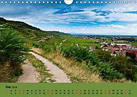 Die Weinstaße im Elsass (Wandkalender 2019 DIN A4 quer) - Produktdetailbild 5