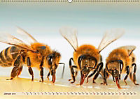 Die Welt der Imkerei: Blüten, Bienen, Honig (Wandkalender 2019 DIN A2 quer) - Produktdetailbild 1