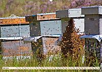 Die Welt der Imkerei: Blüten, Bienen, Honig (Wandkalender 2019 DIN A2 quer) - Produktdetailbild 7