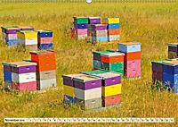 Die Welt der Imkerei: Blüten, Bienen, Honig (Wandkalender 2019 DIN A2 quer) - Produktdetailbild 11