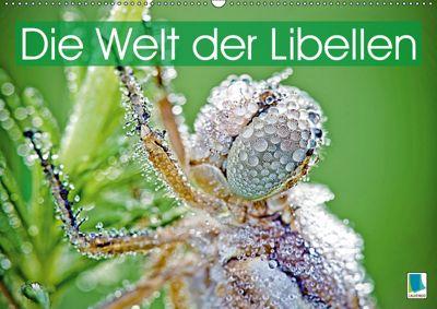 Die Welt der Libellen (Wandkalender 2019 DIN A2 quer), CALVENDO