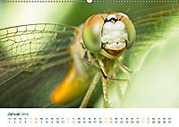 Die Welt der Libellen (Wandkalender 2019 DIN A2 quer) - Produktdetailbild 1