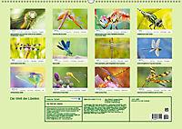 Die Welt der Libellen (Wandkalender 2019 DIN A2 quer) - Produktdetailbild 13