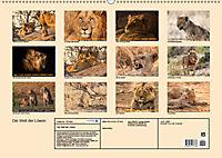 Die Welt der Löwen (Wandkalender 2019 DIN A2 quer) - Produktdetailbild 13