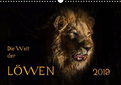 Die Welt der Löwen (Wandkalender 2019 DIN A3 quer), Barbara Bethke