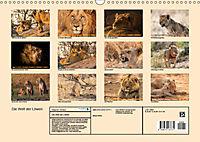 Die Welt der Löwen (Wandkalender 2019 DIN A3 quer) - Produktdetailbild 13