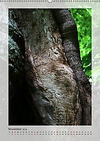 Die Wessobrunner Tassilolinde (Wandkalender 2019 DIN A2 hoch) - Produktdetailbild 11