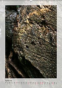 Die Wessobrunner Tassilolinde (Wandkalender 2019 DIN A2 hoch) - Produktdetailbild 4