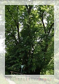 Die Wessobrunner Tassilolinde (Wandkalender 2019 DIN A2 hoch) - Produktdetailbild 12