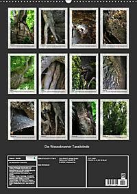 Die Wessobrunner Tassilolinde (Wandkalender 2019 DIN A2 hoch) - Produktdetailbild 13