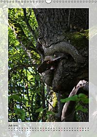 Die Wessobrunner Tassilolinde (Wandkalender 2019 DIN A3 hoch) - Produktdetailbild 7