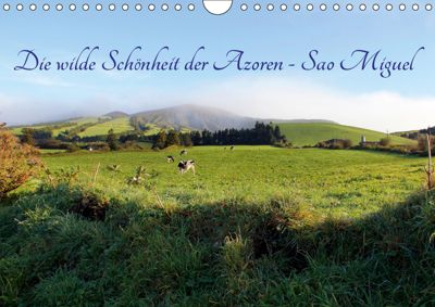 Die wilde Schönheit der Azoren - Sao Miguel (Wandkalender 2019 DIN A4 quer), Rabea Albilt