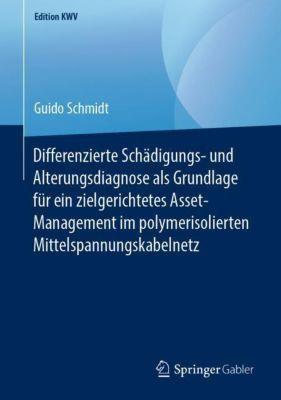 Differenzierte Schädigungs- und Alterungsdiagnose als Grundlage für ein zielgerichtetes Asset-Management im polymerisoli - Guido Schmidt  