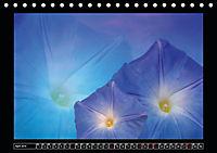 Digitale Kunst und Natur (Tischkalender 2019 DIN A5 quer) - Produktdetailbild 4