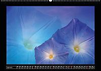 Digitale Kunst und Natur (Wandkalender 2019 DIN A2 quer) - Produktdetailbild 4