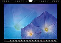 Digitale Kunst und Natur (Wandkalender 2019 DIN A4 quer) - Produktdetailbild 4