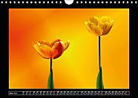 Digitale Kunst und Natur (Wandkalender 2019 DIN A4 quer) - Produktdetailbild 3