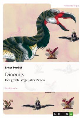 Dinornis, Ernst Probst