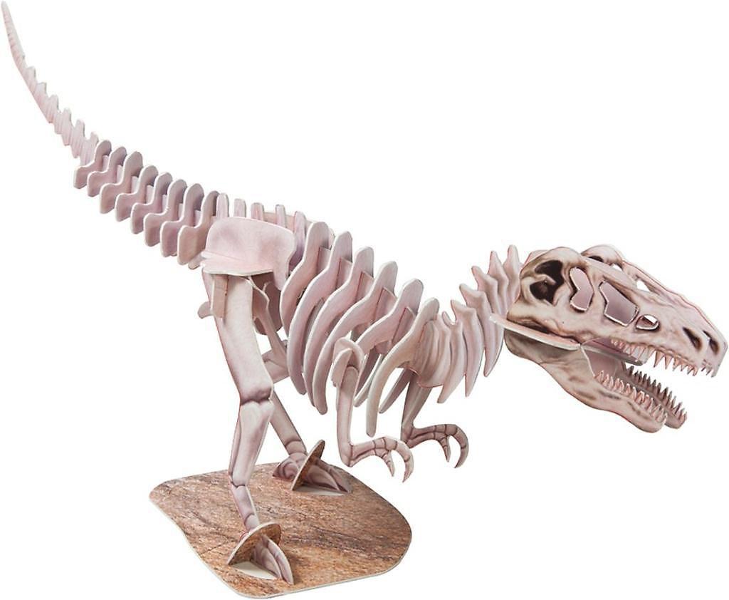 Dinosaurier Skelett Modell T Rex Buch Bei Weltbild At Bestellen