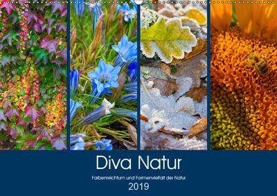 Diva Natur (Wandkalender 2019 DIN A2 quer), Birgit Seifert