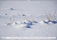 Diva Natur (Wandkalender 2019 DIN A2 quer) - Produktdetailbild 1