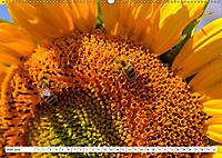 Diva Natur (Wandkalender 2019 DIN A2 quer) - Produktdetailbild 6