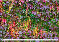 Diva Natur (Wandkalender 2019 DIN A2 quer) - Produktdetailbild 10