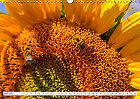 Diva Natur (Wandkalender 2019 DIN A3 quer) - Produktdetailbild 6