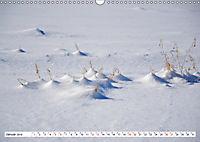 Diva Natur (Wandkalender 2019 DIN A3 quer) - Produktdetailbild 1