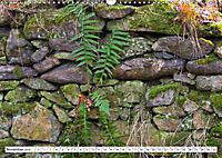 Diva Natur (Wandkalender 2019 DIN A3 quer) - Produktdetailbild 11