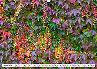 Diva Natur (Wandkalender 2019 DIN A3 quer) - Produktdetailbild 10