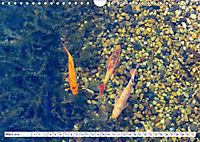 Diva Natur (Wandkalender 2019 DIN A4 quer) - Produktdetailbild 3