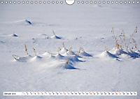 Diva Natur (Wandkalender 2019 DIN A4 quer) - Produktdetailbild 1