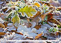 Diva Natur (Wandkalender 2019 DIN A4 quer) - Produktdetailbild 12