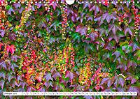 Diva Natur (Wandkalender 2019 DIN A4 quer) - Produktdetailbild 10