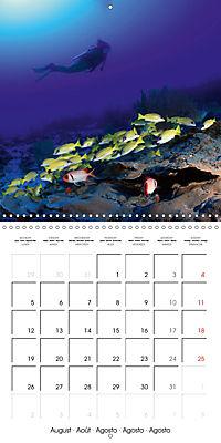 Diving - The wonderful water world (Wall Calendar 2019 300 × 300 mm Square) - Produktdetailbild 8