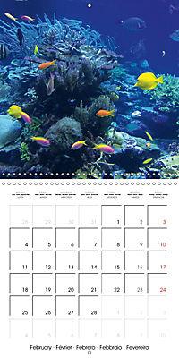 Diving - The wonderful water world (Wall Calendar 2019 300 × 300 mm Square) - Produktdetailbild 2