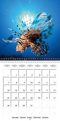 Diving - The wonderful water world (Wall Calendar 2019 300 × 300 mm Square) - Produktdetailbild 1
