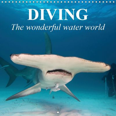 Diving - The wonderful water world (Wall Calendar 2019 300 × 300 mm Square), Elisabeth Stanzer