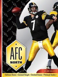 Divisions of Football: AFC North, Jim Gigliotti