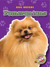 Dog Breeds: Pomeranians, Sara Green