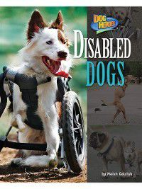 Dog Heroes: Disabled Dogs, Meish Goldish