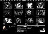 Dogs - Black & White (Wandkalender 2019 DIN A2 quer) - Produktdetailbild 13