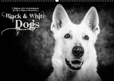 Dogs - Black & White (Wandkalender 2019 DIN A2 quer), Oliver Pinkoss